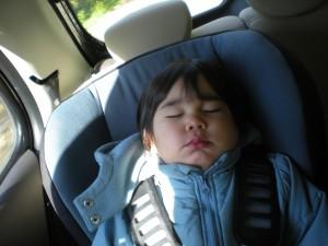 Sleeping Andre