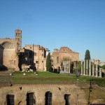 View of Ruins from Colosseum