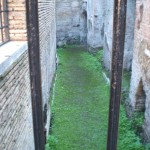 Colosseum bars