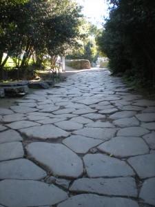 Forum pathway