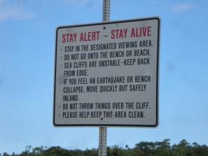 Stay alert - stay alive